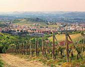 Alba, Piemont | italien.de