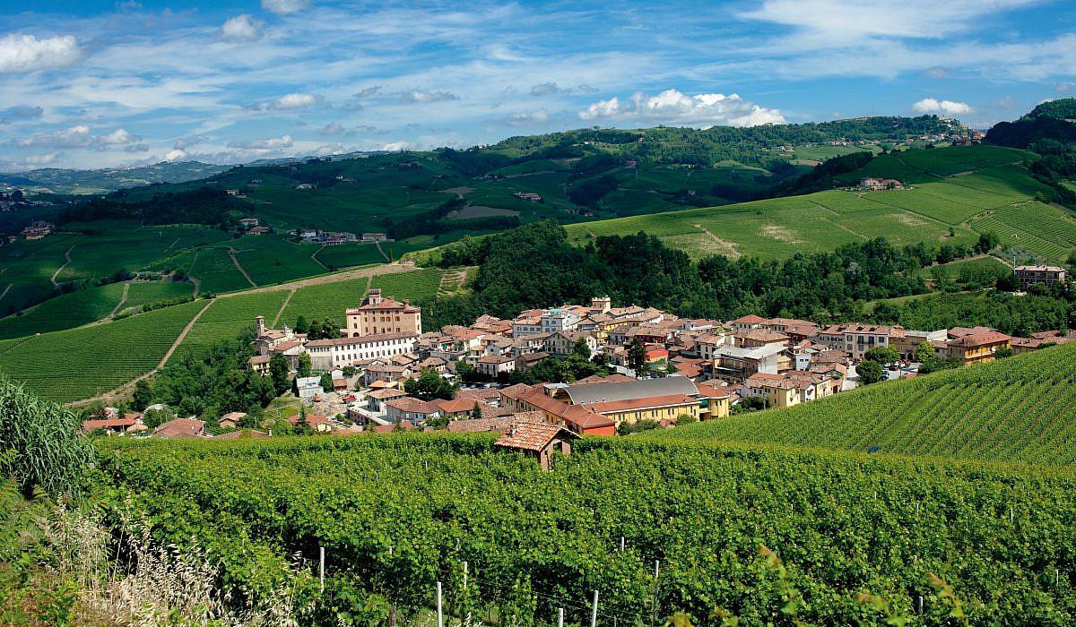 Barolo Weinberge, Piemont | italien.de