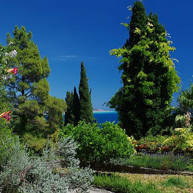 Botanischer Garten Hanbury