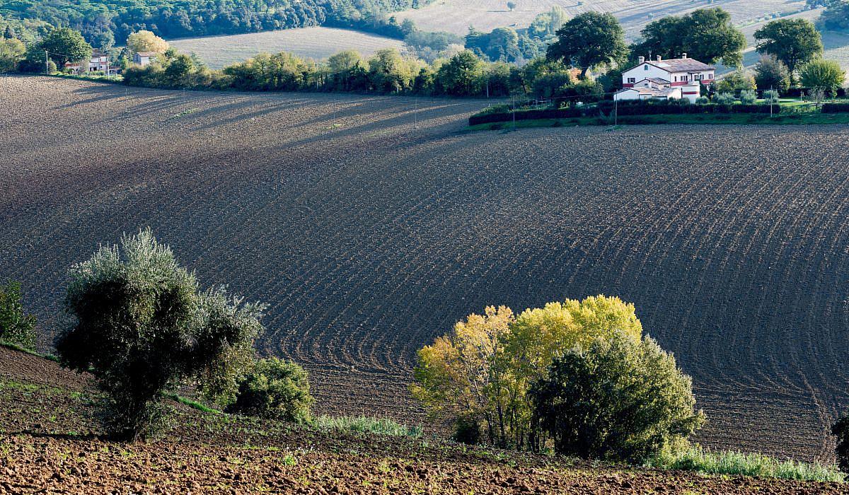 Herbstlandschaft, Marken | italien.de