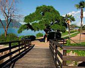 Stresa am Lago Maggiore, Piemont | italien.de