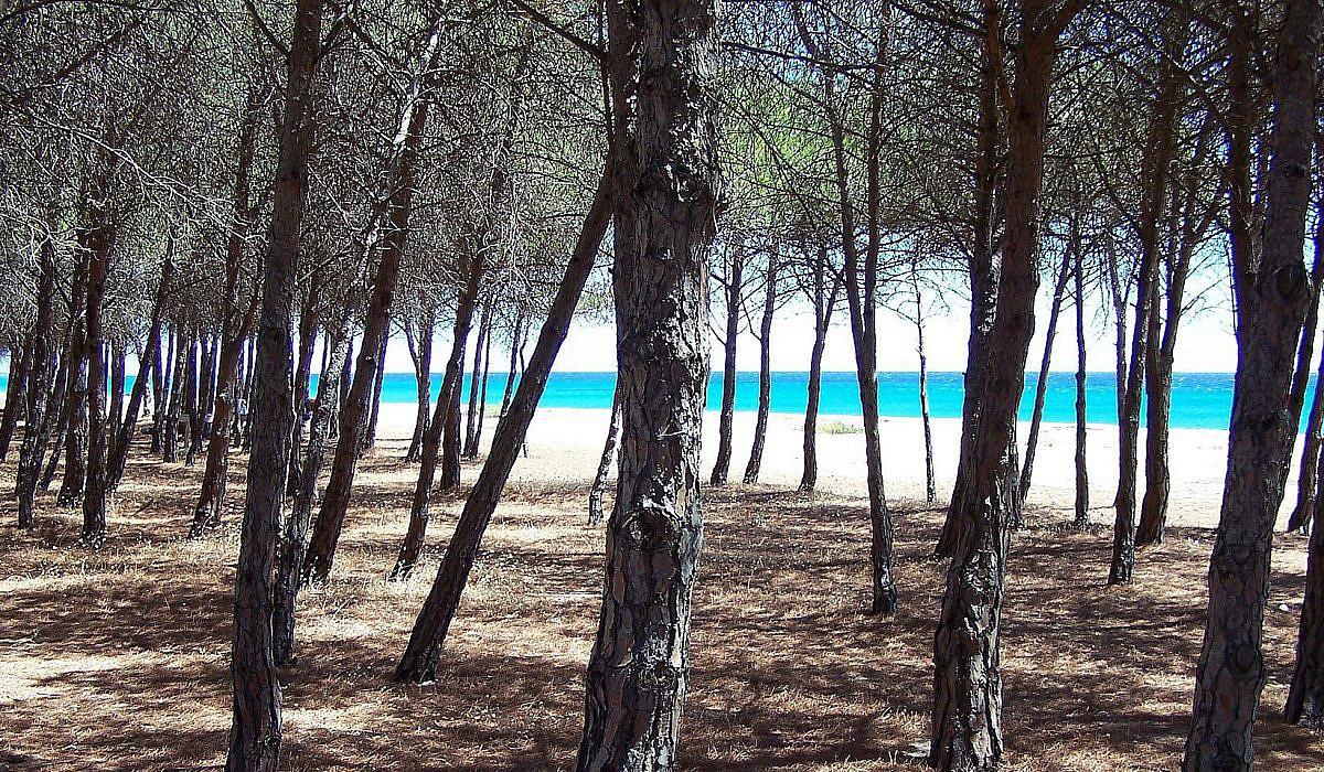 Marina di Orosei, Sardinien| italien.de