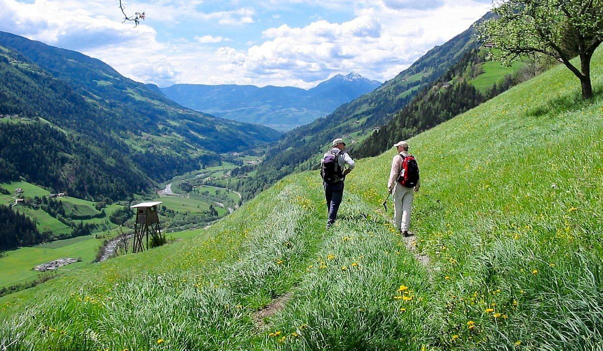 Meraner Höhenweg, Südtirol | italien.de