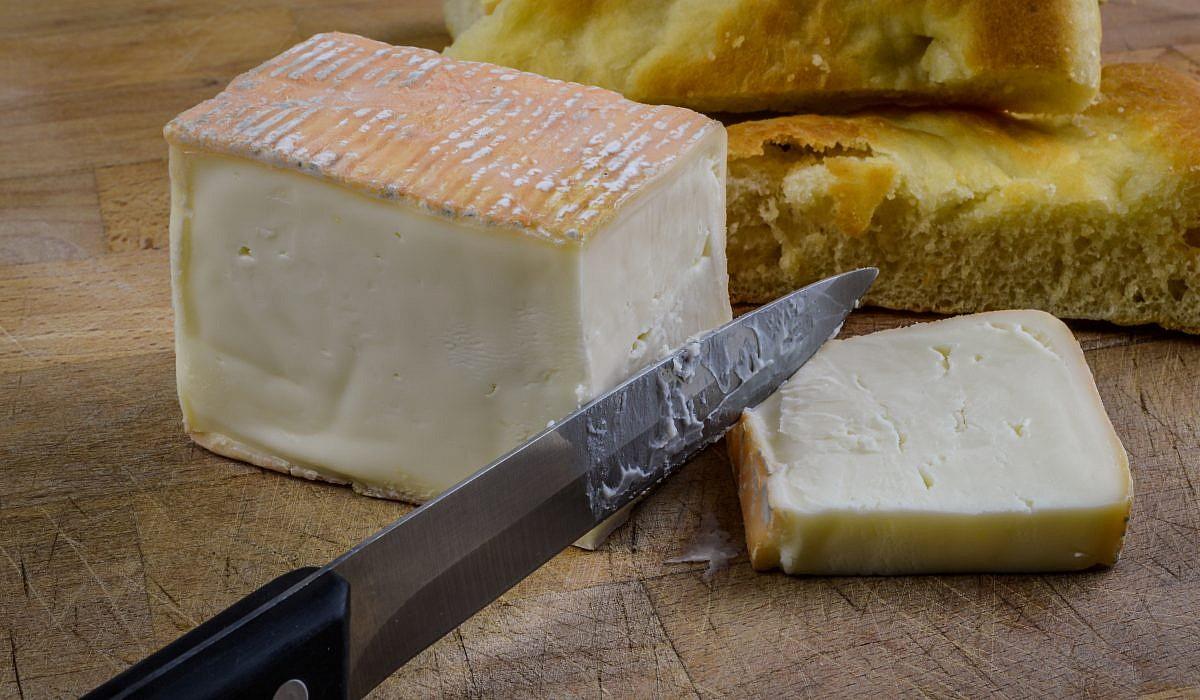 Taleggio, Käse | italien.de