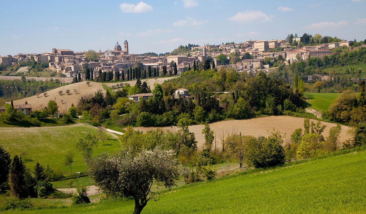 Urbino, Marken | italien.de