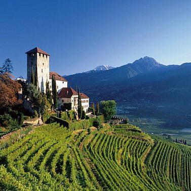 Genussvolle Weinreise durch Südtirol